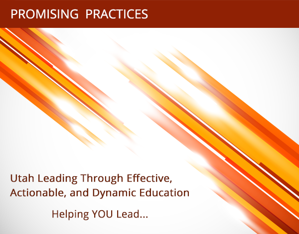 ULEAD Promising Practices