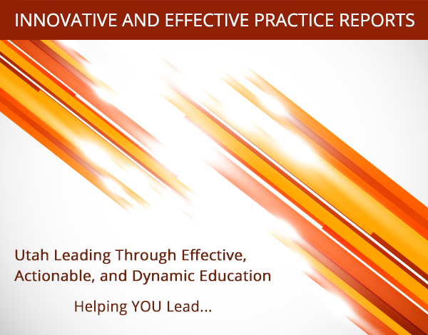 ULEAD Innovative and Effective Practice Report